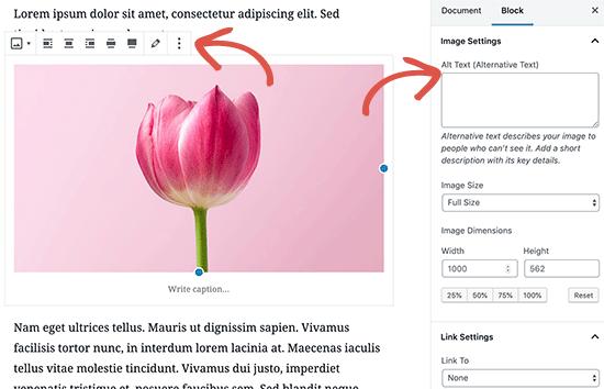 namestanje fotografije u wordpress